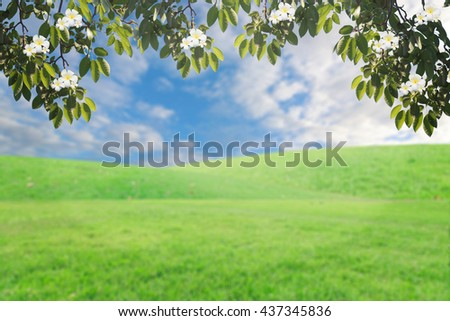 background retouch sky with clouds and flowers on grass