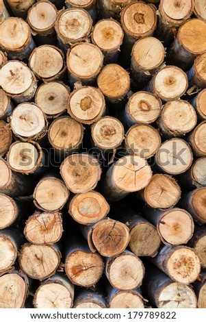 Background section of eucalyptus logs available to retail weathered. - stock photo