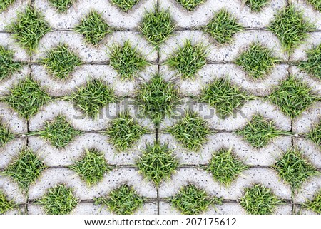 background stone block walk path in the park with green grass  - stock photo