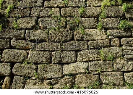 Background stone wall with grass