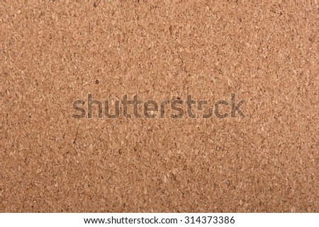 Background texture of brown corkwood close up