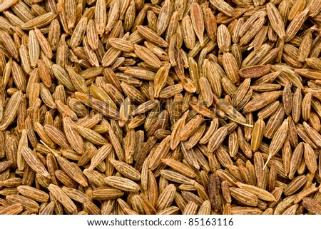Background texture of fennel seeds.