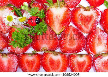 Background texture of sliced strawberries and ladybugs