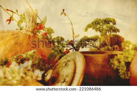 Background texture with pumpkins, carrots, seeds, butternut squash and herbs - Still life composition with seasonal vegetables of autumn