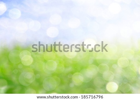 background with a soft bokeh from the sky and grassland  - stock photo