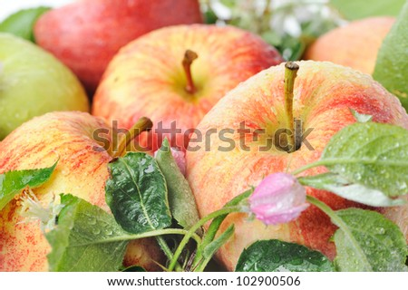 background with fresh apples - stock photo