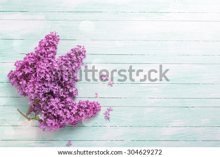 Background  with fresh lilac flowers in ray of light  on turquoise painted wooden planks. Selective focus. Place for text. - stock photo