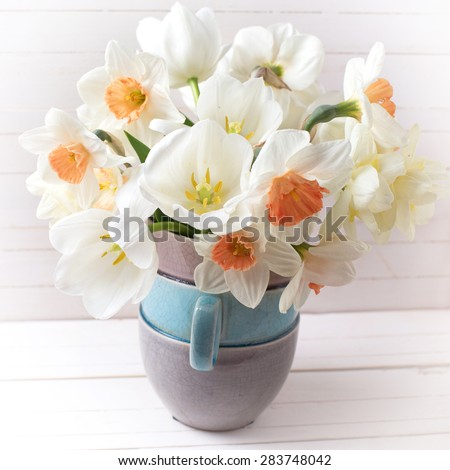 Background with fresh spring  pink daffodils  and white tulips flowers in vase  on white wooden planks. Selective focus.  Square image. - stock photo