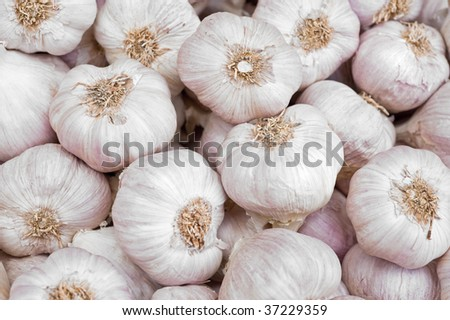 background with garlic