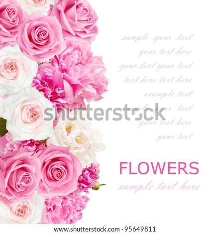 Background with peonies and roses isolated on white with sample text - stock photo
