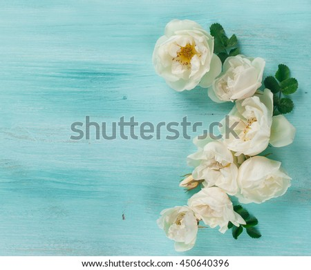 Background with rose, selective focus. flat lay, overhead view, top view - stock photo