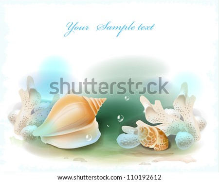 background with seashells and corals - stock photo