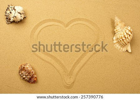 Background with seashells and sand drawing hearts, unfocused - stock photo