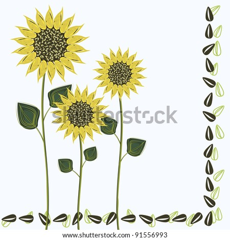 Background with sunflowers and seeds