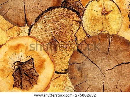 Background with texture cut of a logs - stock photo