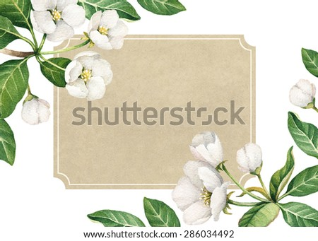 Background with watercolor apple flowers - stock photo