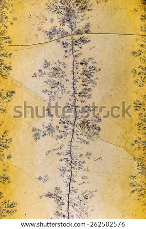Backgrounds and textures: surface of beautiful yellow-grey decorative stone, abstract pattern of cracks, spots and stains, natural background - stock photo