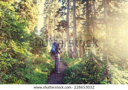 backpacker in forest - stock photo