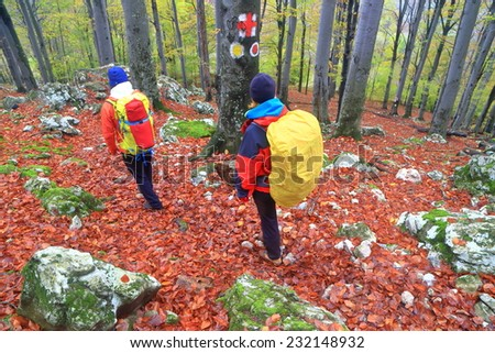 Backpackers descending a forest trail on fallen leaves in autumn day - stock photo