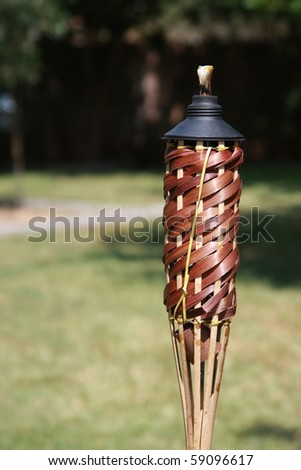 backyard citronella torch - stock photo