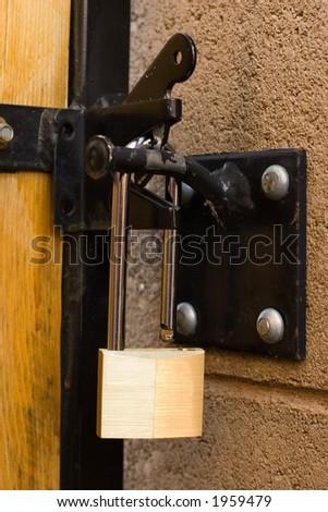 Backyard Door Long Handle Lock; Focus On The Lock.