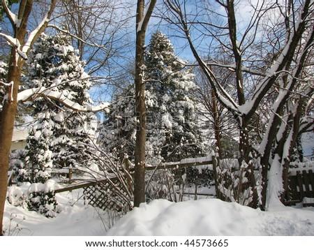 Backyard snow scene - stock photo