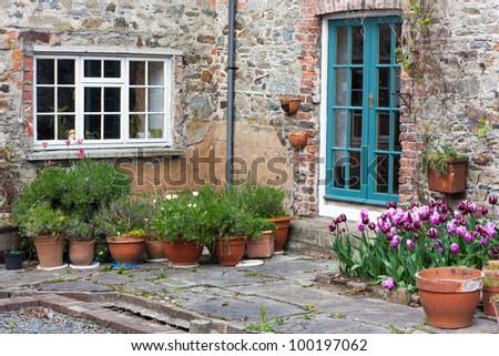Backyard with tulips and orange flower pots - stock photo