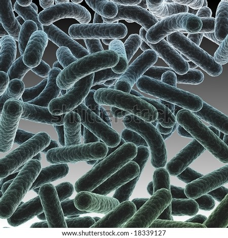 Bacteria Colony A bacteria colony for medical ads and presentations - stock photo