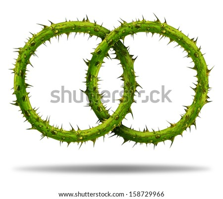 Bad partnership and difficult marriage as two thorny plant chain links with needles as a social and business relationship metaphor for team challenges and network conflict problems on white. - stock photo