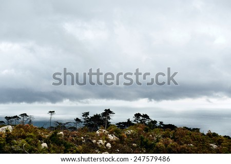 bad weather in mountainous terrain. yalta mountain-forest nature reserve. low key. View of the sea from a height of wooded hills - stock photo