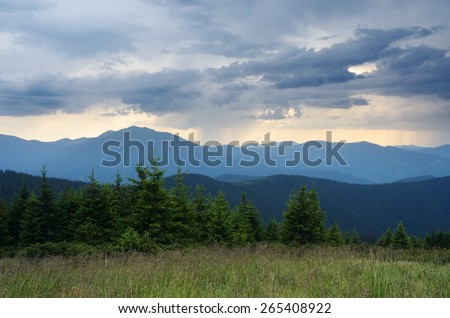 Bad weather. Rain in the mountains. Spruce forest on the hillside - stock photo