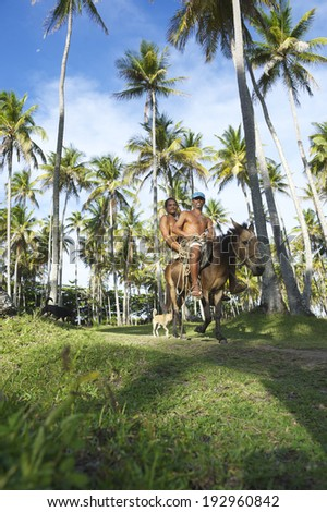 BAHIA, BRAZIL - MARCH 9, 2014: Two Brazilian working men share a ride on a mule through a palm plantation on the Costa dos Coqueiros Coconut Coast.