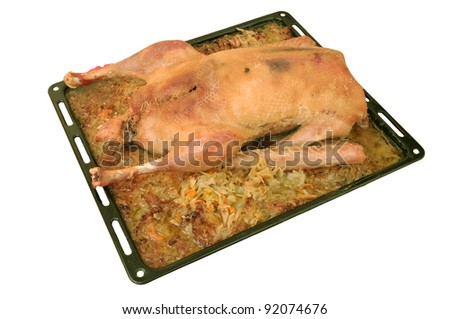 baked  goose with sauerkraut on a baking isolated on white background - stock photo