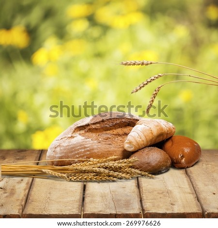 Bakery. Assorted Breads with wheat isolated - stock photo