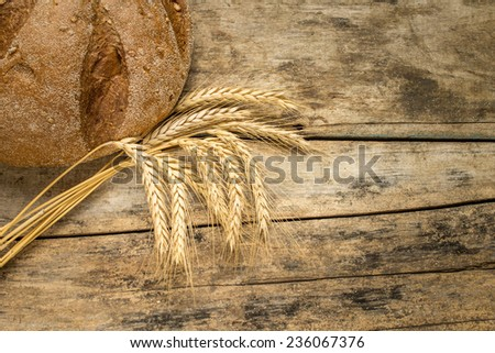 Bakery background. Fresh bread on wooden table with wheat ears.