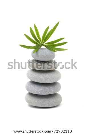 balance gray stone with green plant - stock photo