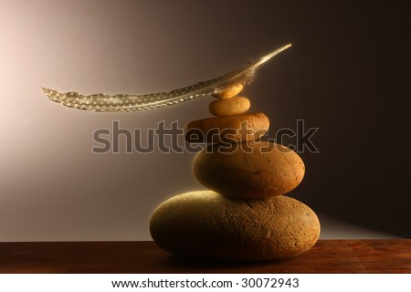 Balanced feather soft highlights - stock photo