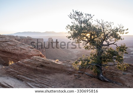 Balanced rock in arches national park at night with light p[ainted puniper - stock photo
