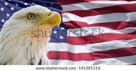 Bald Eagle and American Flag - stock photo