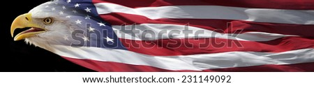 bald eagle combined with US flag to form a banner - stock photo