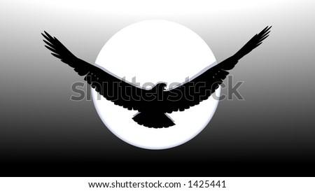 bald eagle silhouette - stock photo