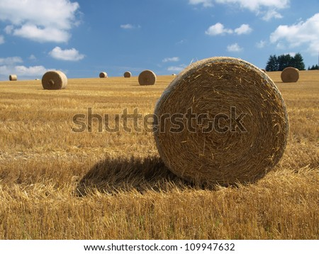 bale of straw on a field