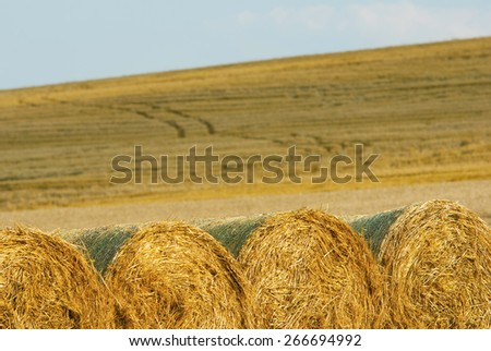 bale of straw on harvested agricultural field at sunset - stock photo