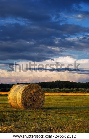 Bale of Straw / Summer landscape with bale and stormy cloud - stock photo