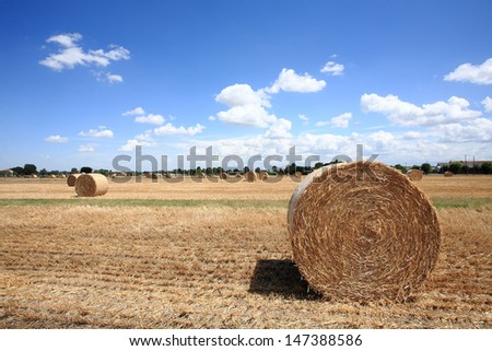 bales of hay straw