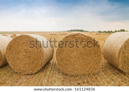 Bales of straw in a row on stubble field - stock photo