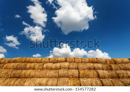 Bales of straw under blue cloudy sky - country landscape - stock photo