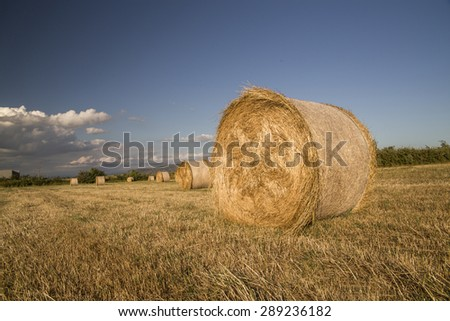 bales straw summer background - clouds blue sky