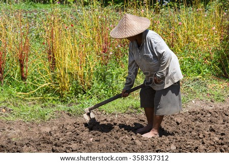 BALI, INDONESIA - FEBRUARY 22, 2015 : Unknown old woman farmer holding spade at field. Daily activities of female farmer in order to feed themselves and their families