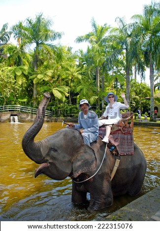 BALI, INDONESIA - JANUARY 2, 2011: Caucasian woman enjoy a ride with mahout on the back of an Asian elephant during a trek through Elephant Safary Park in Bali, Indonesia.  - stock photo